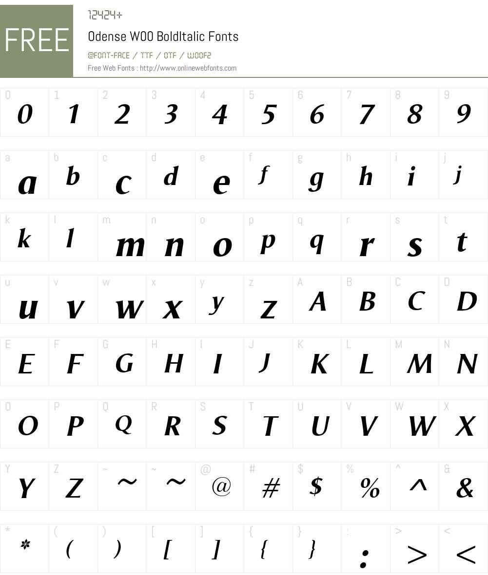 OdenseW00-BoldItalic Font Screenshots
