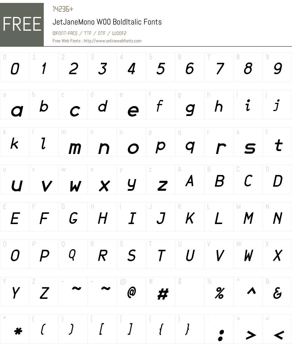 JetJaneMonoW00-BoldItalic Font Screenshots