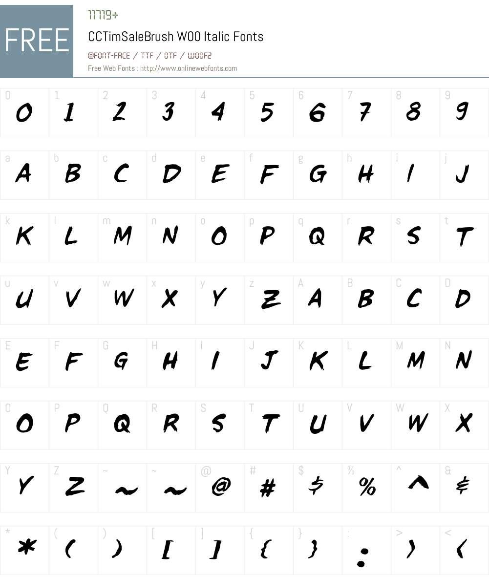 CCTimSaleBrushW00-Italic Font Screenshots