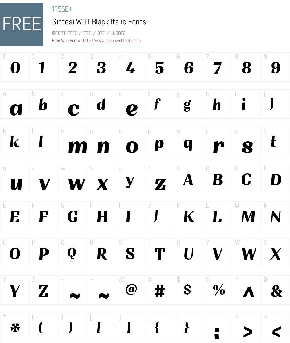 SintesiW01-BlackItalic Font Screenshots