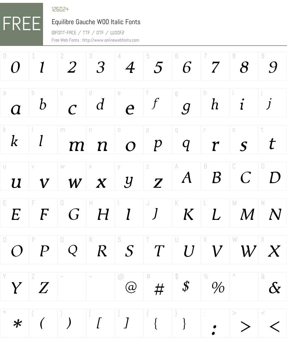 EquilibreGaucheW00-Italic Font Screenshots