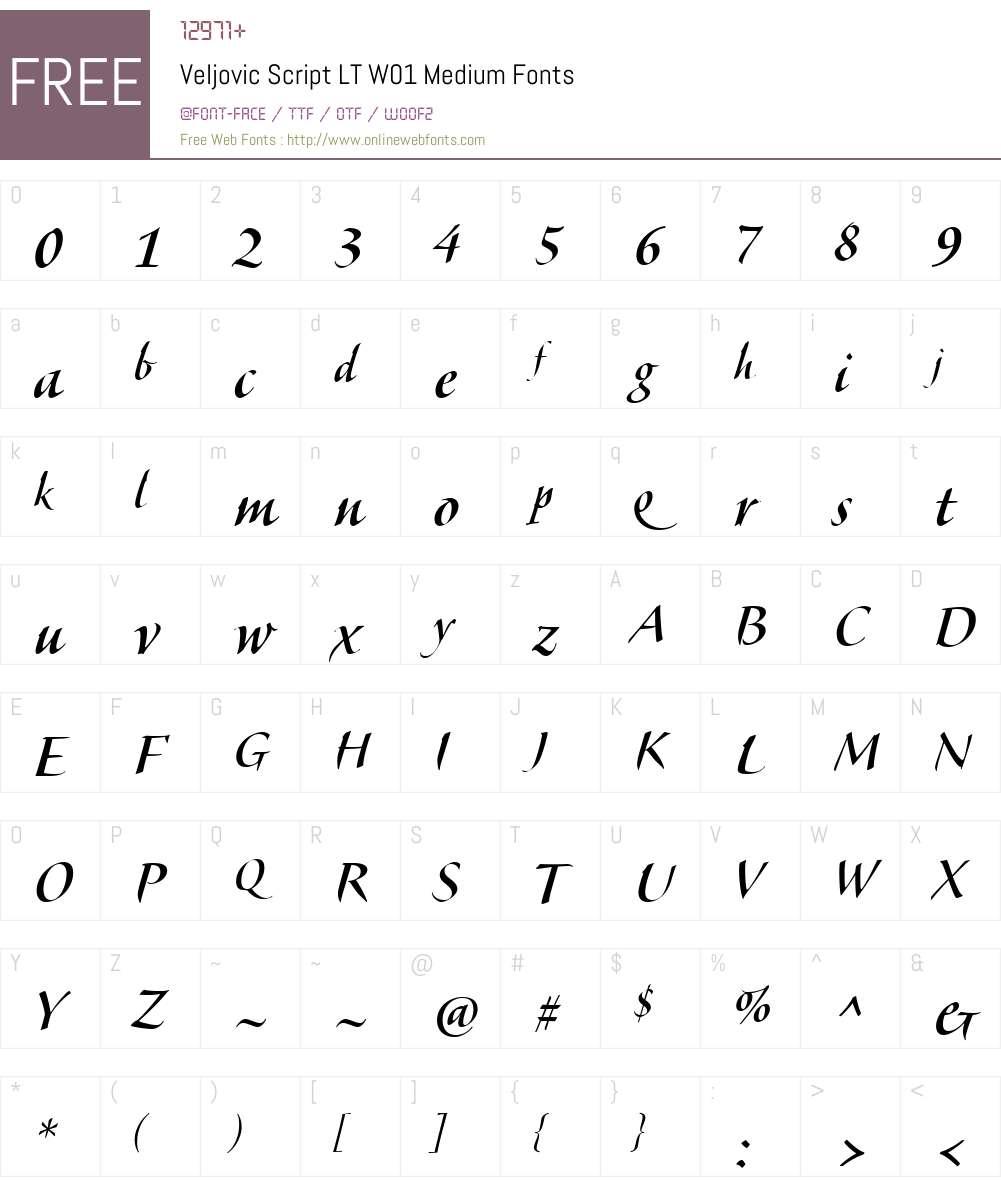 VeljovicScriptLTW01-Medium Font Screenshots