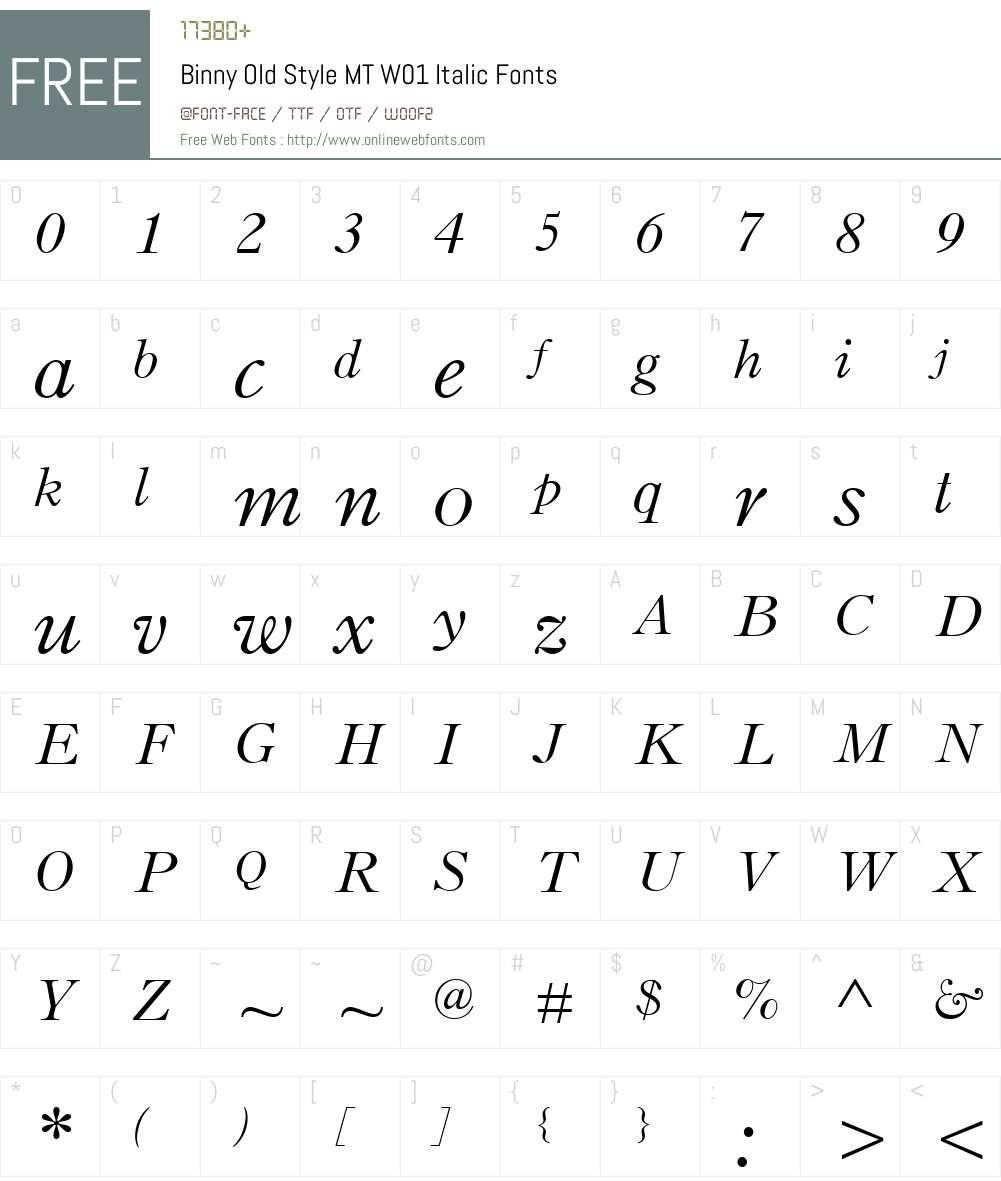 BinnyOldStyleMTW01-Italic Font Screenshots