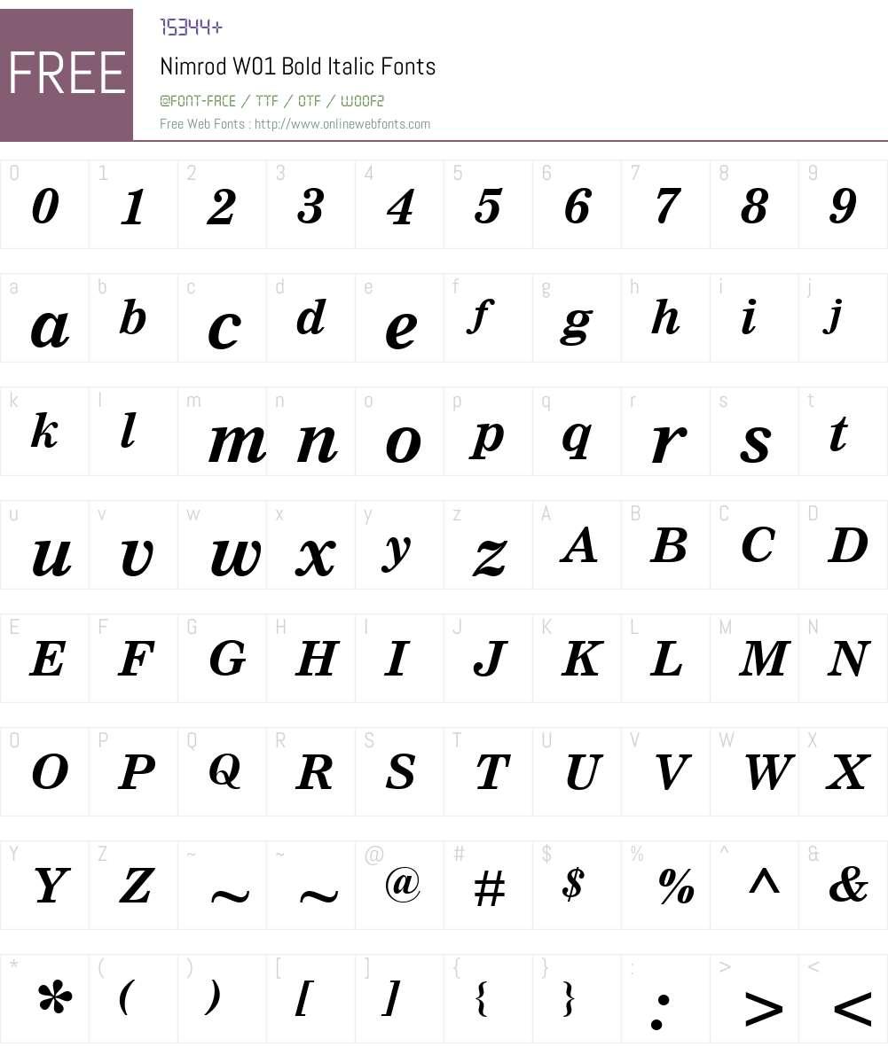 NimrodW01-BoldItalic Font Screenshots