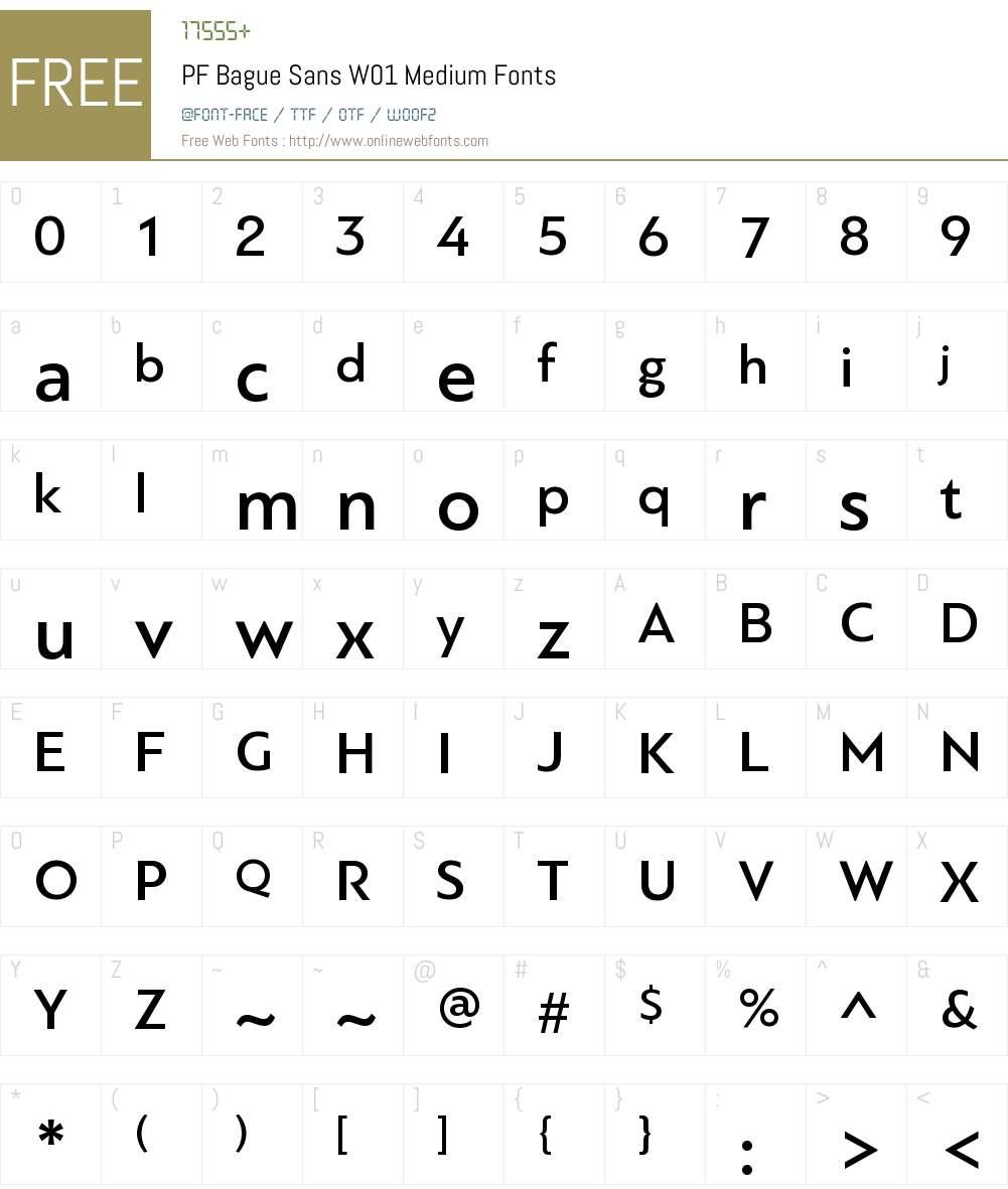 PFBagueSansW01-Medium Font Screenshots