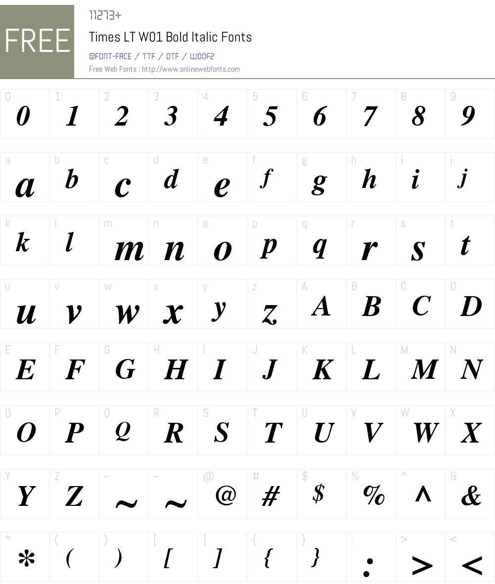 TimesLTW01-BoldItalic Font Screenshots