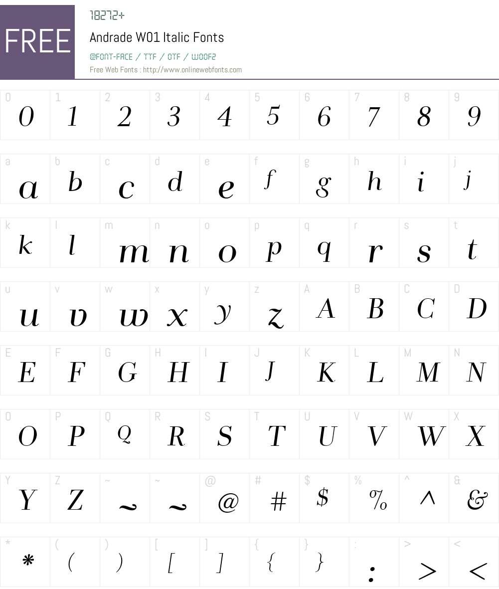 AndradeW01-Italic Font Screenshots