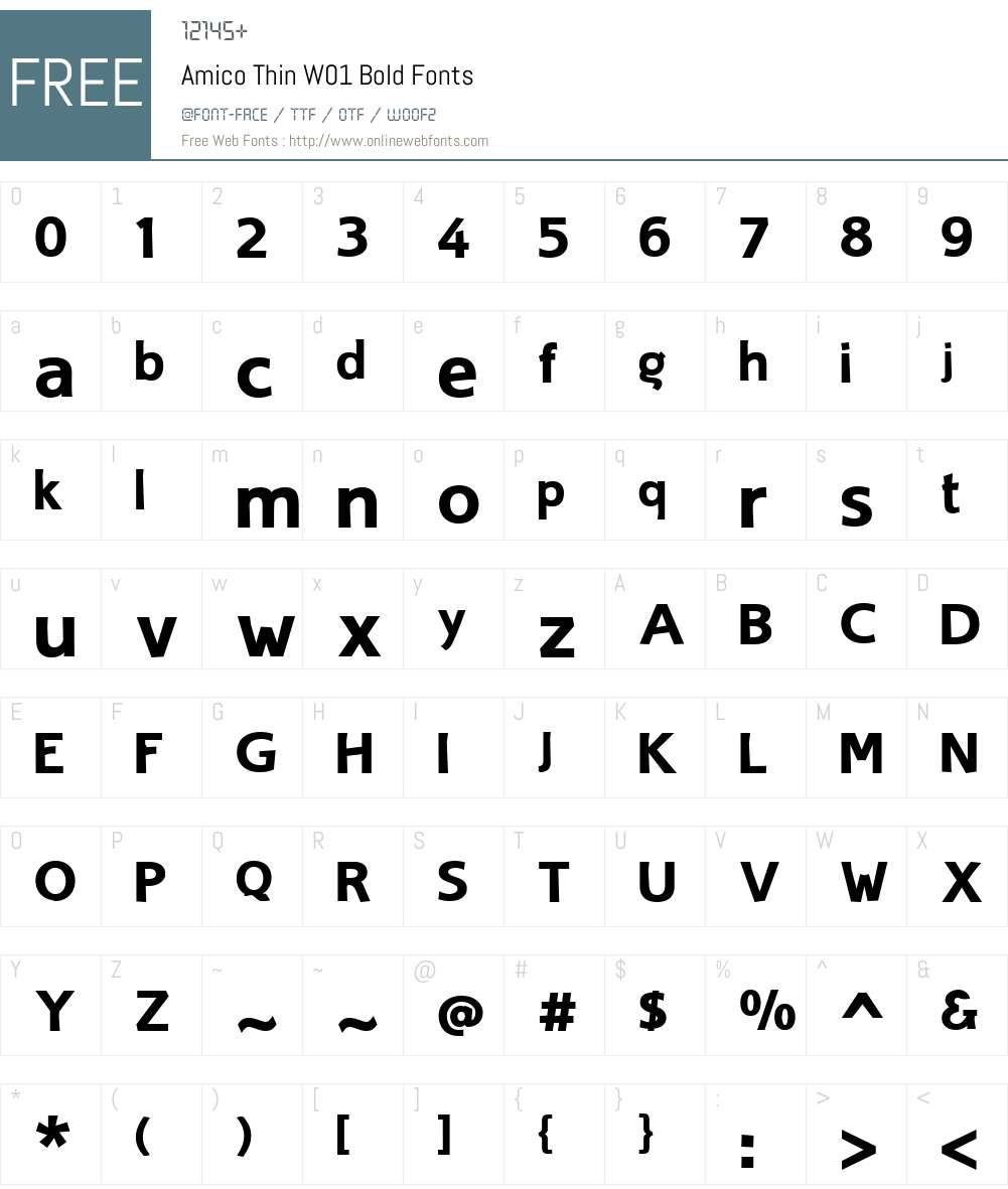AmicoThinW01-Bold Font Screenshots
