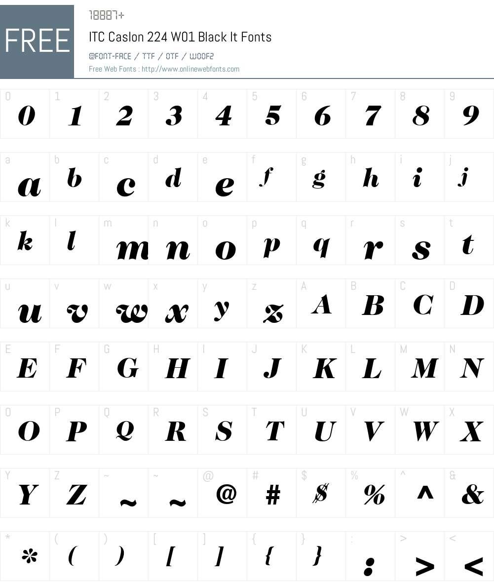 ITCCaslon224W01-BlackItalic Font Screenshots