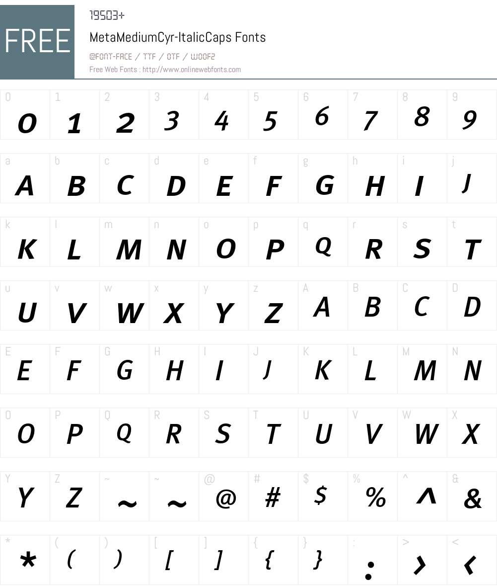 MetaMediumCyr-ItalicCaps Font Screenshots