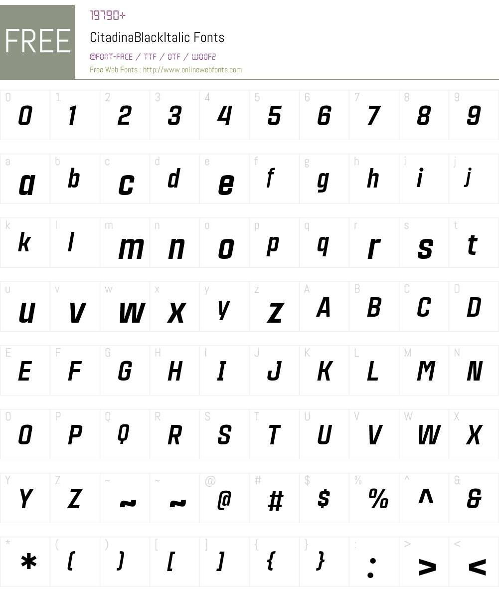 CitadinaBlackItalic Font Screenshots