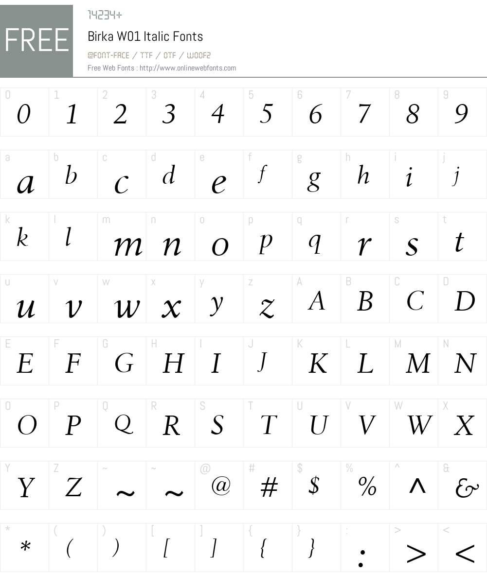 BirkaW01-Italic Font Screenshots