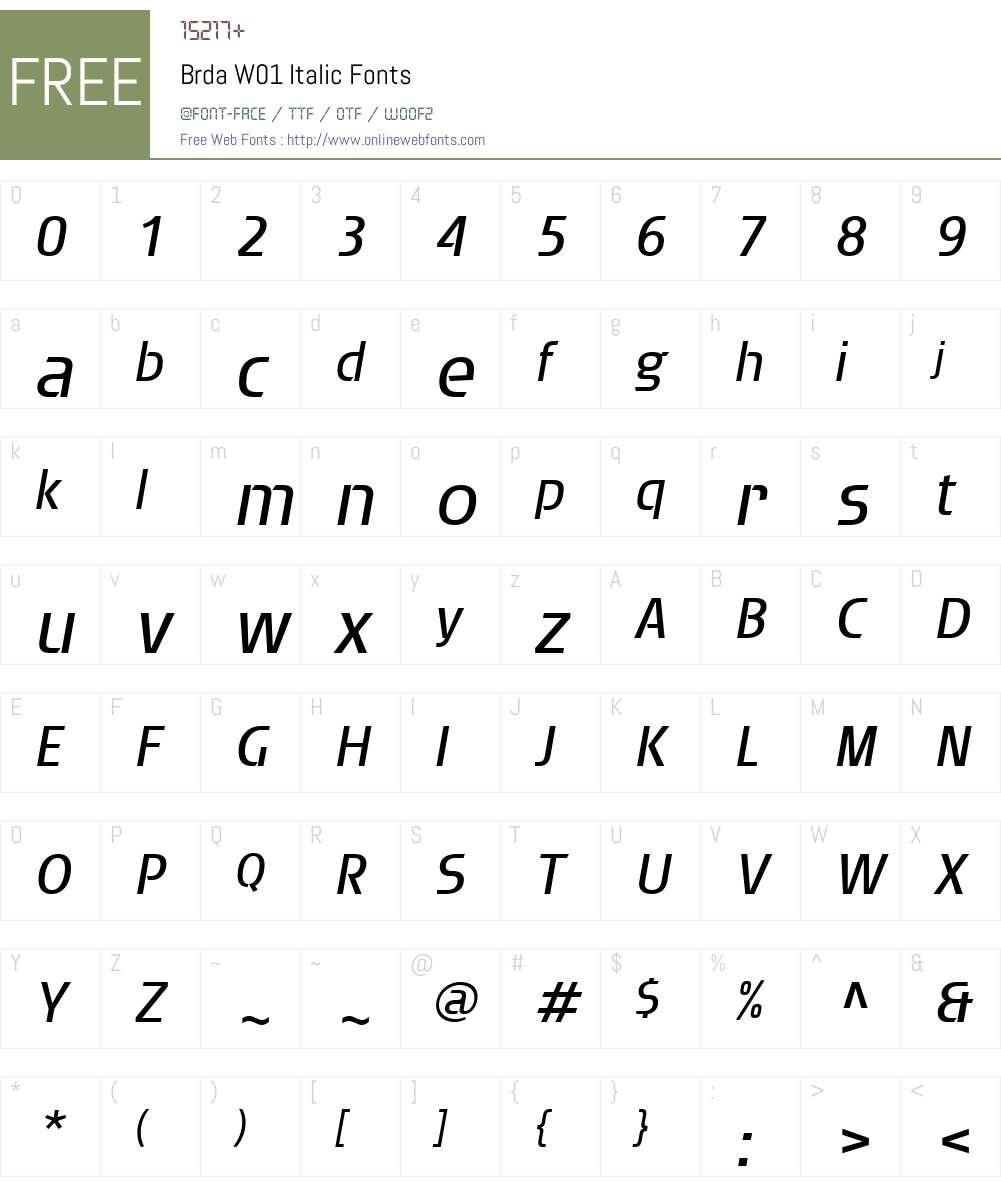 BrdaW01-Italic Font Screenshots