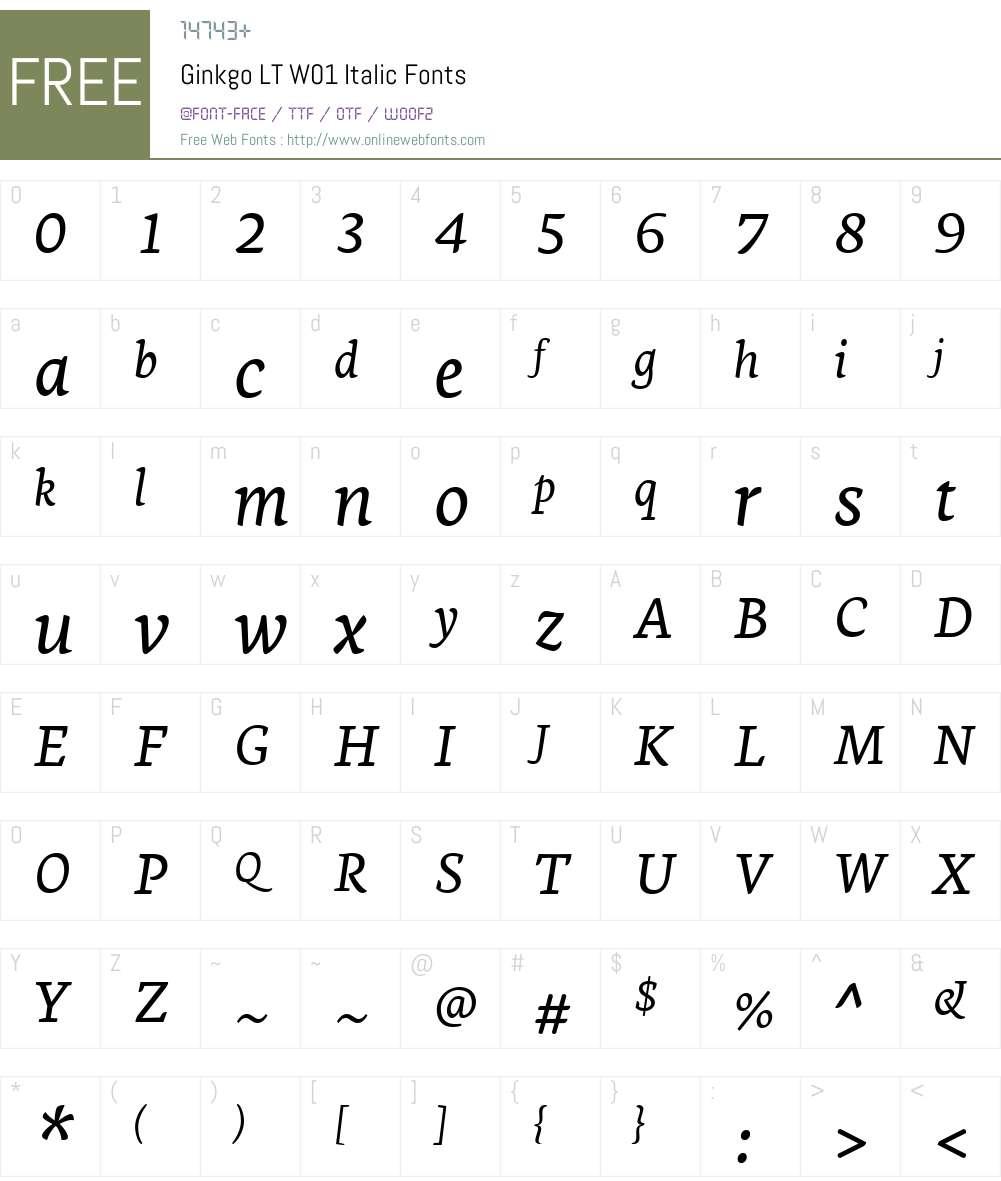 GinkgoLTW01-Italic Font Screenshots