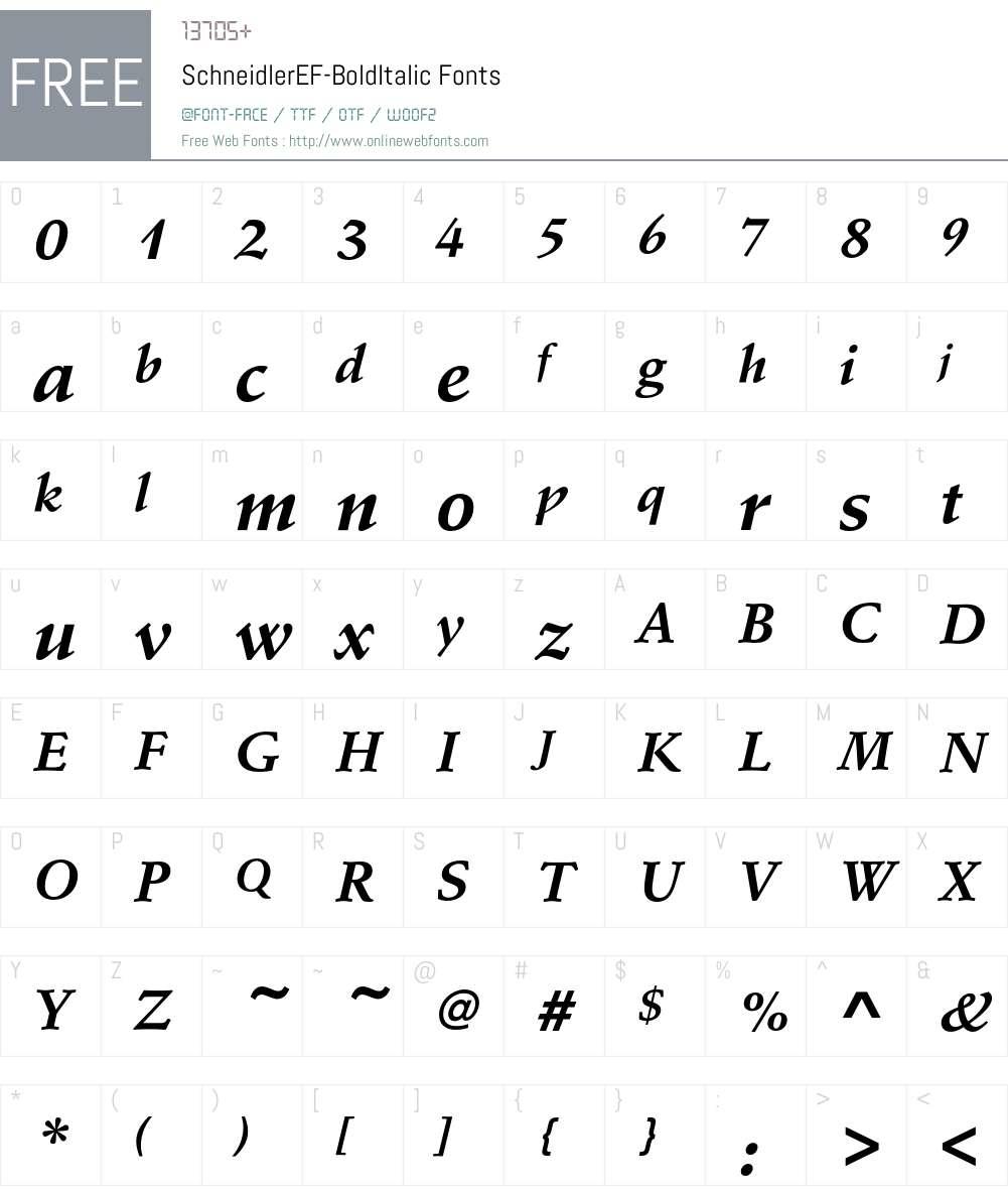SchneidlerEF-BoldItalic Font Screenshots
