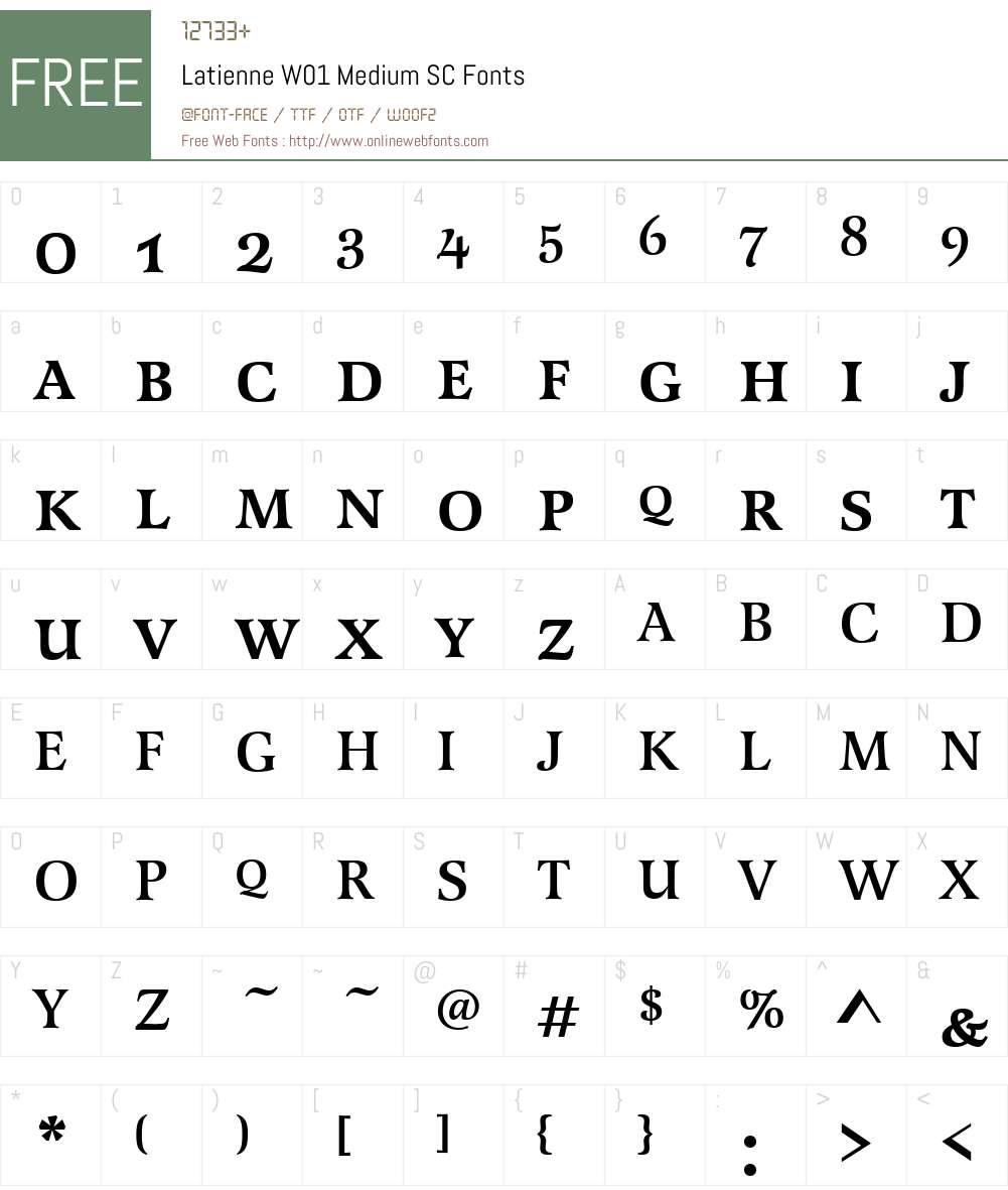 LatienneW01-MediumSC Font Screenshots