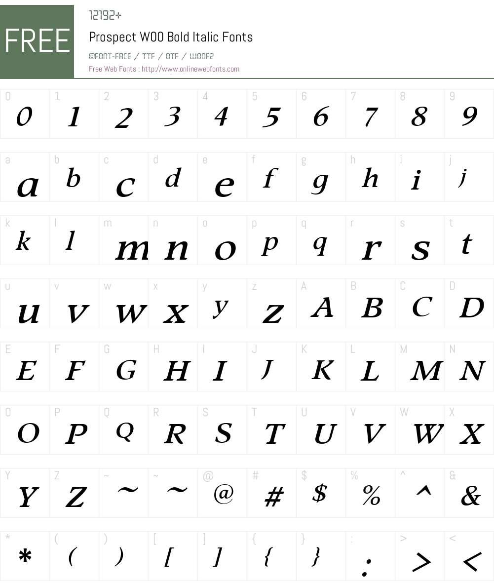 ProspectW00-BoldItalic Font Screenshots