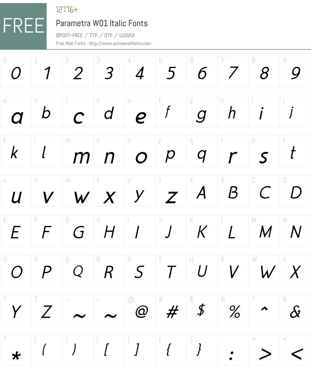 ParametraW01-Italic Font Screenshots