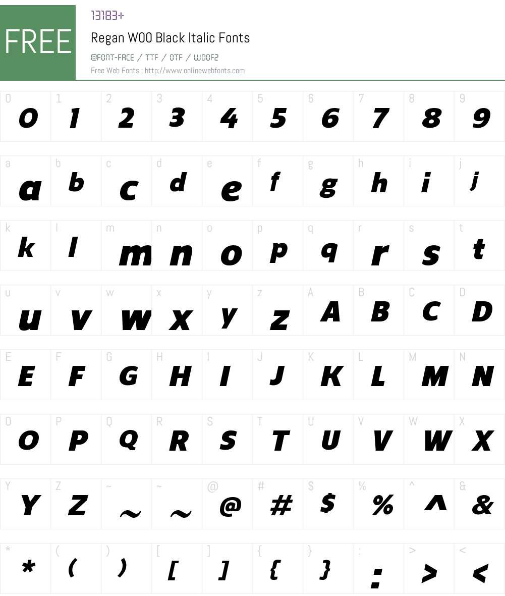 ReganW00-BlackItalic Font Screenshots