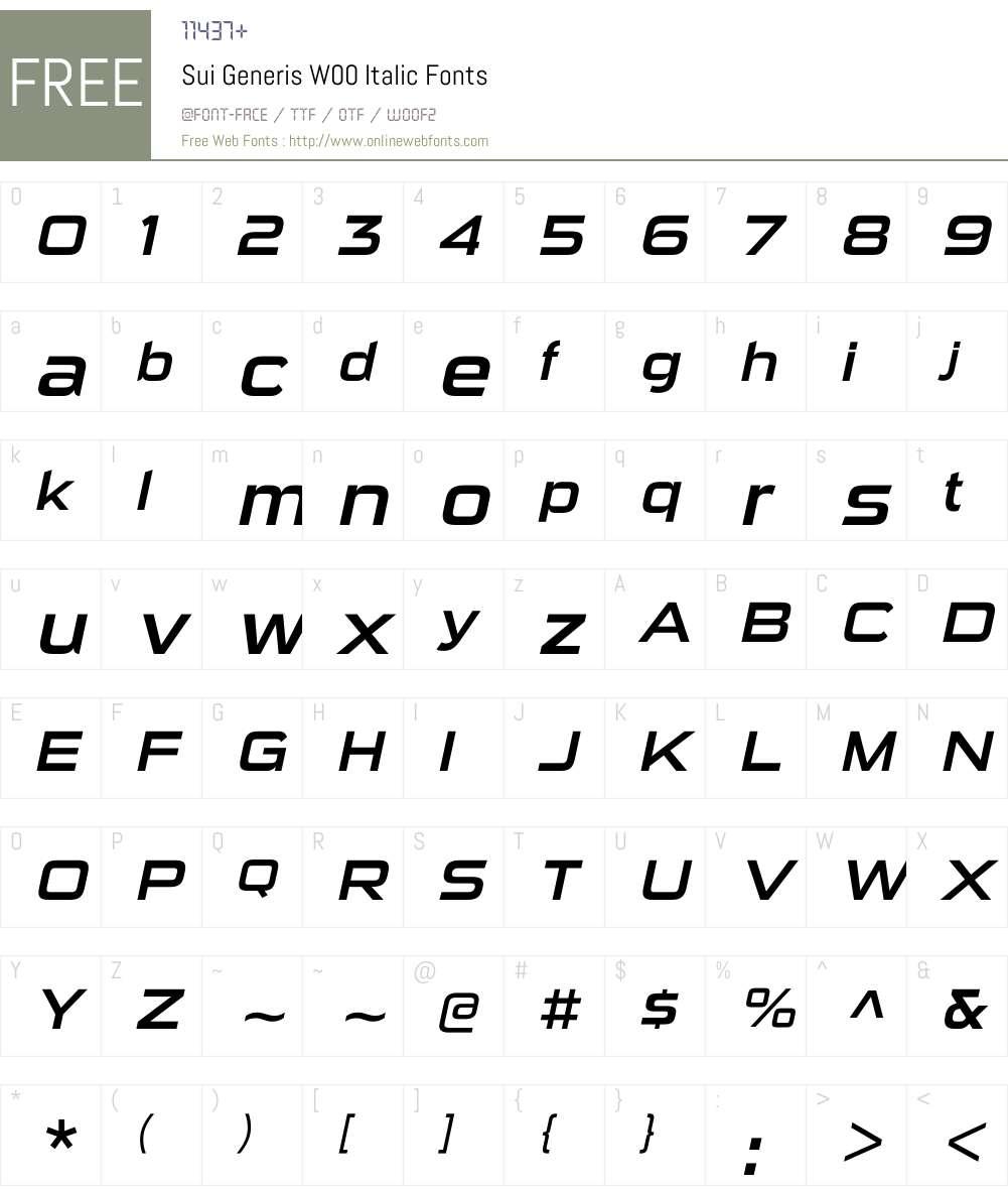 SuiGenerisW00-Italic Font Screenshots