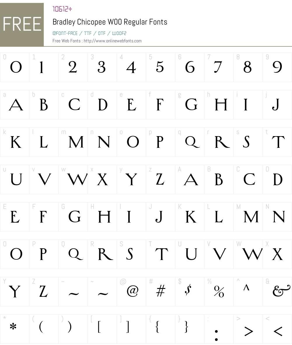 BradleyChicopeeW00-Regular Font Screenshots