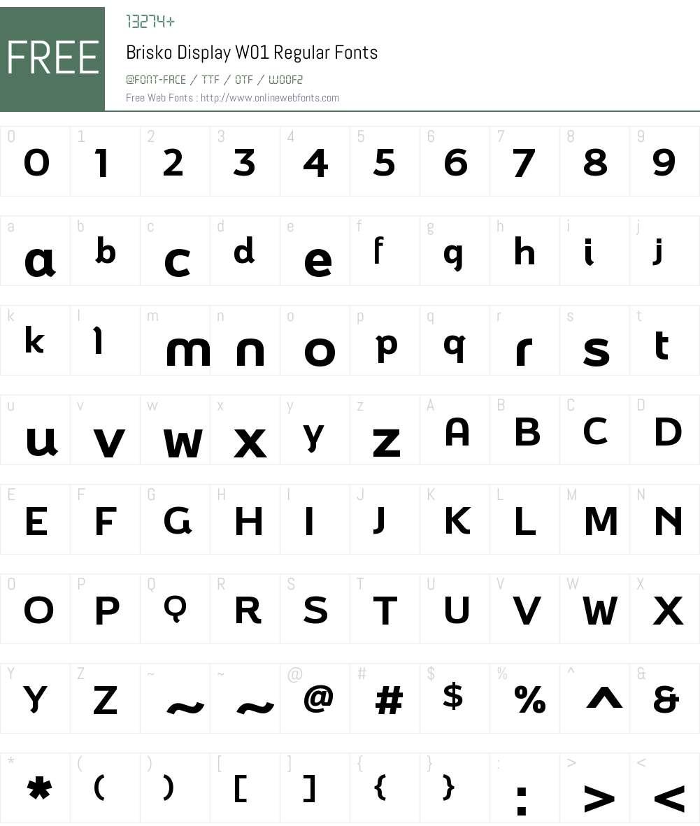 BriskoDisplayW01-Regular Font Screenshots