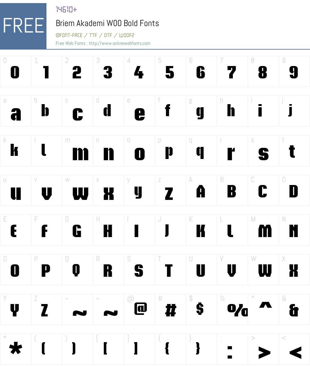 BriemAkademiW00-Bold Font Screenshots