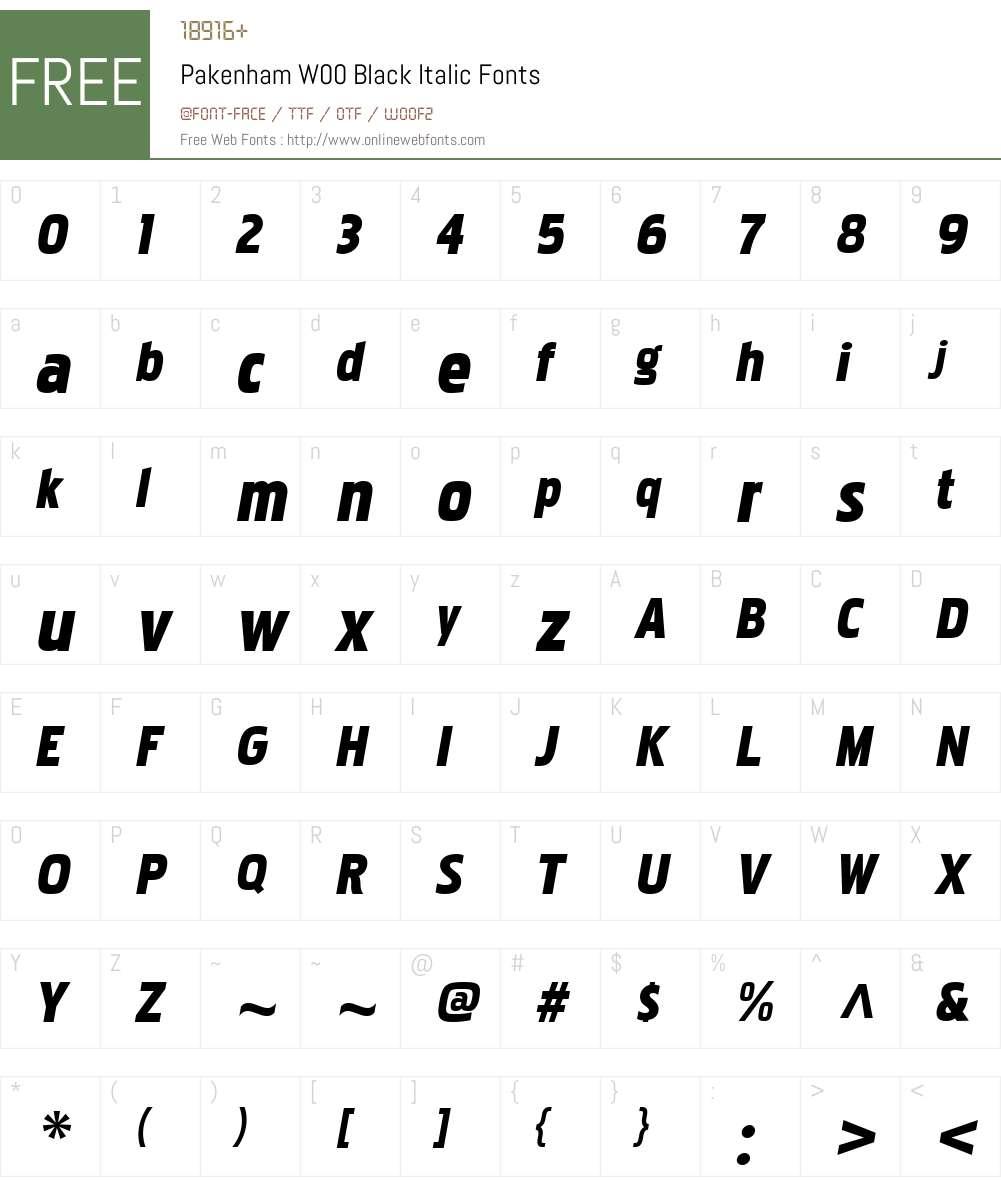 PakenhamW00-BlackItalic Font Screenshots