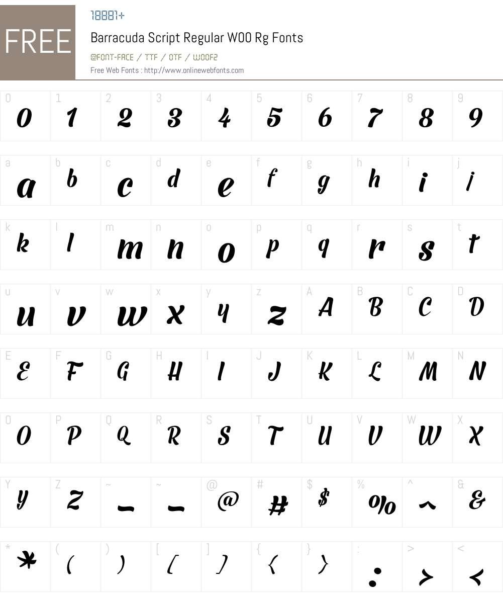 BarracudaScriptRegularW00 Font Screenshots
