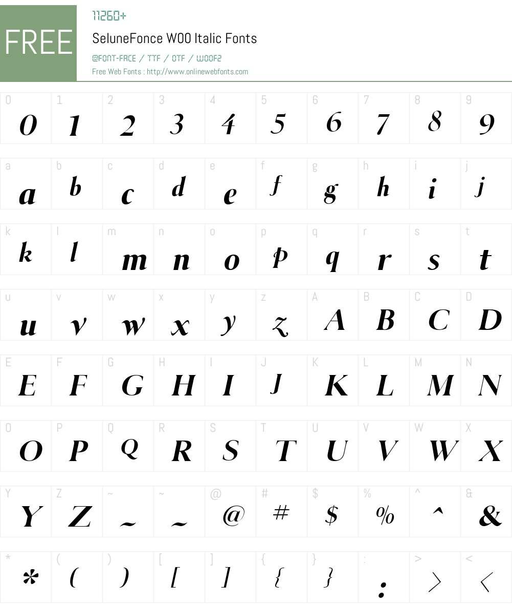 SeluneFonceW00-Italic Font Screenshots