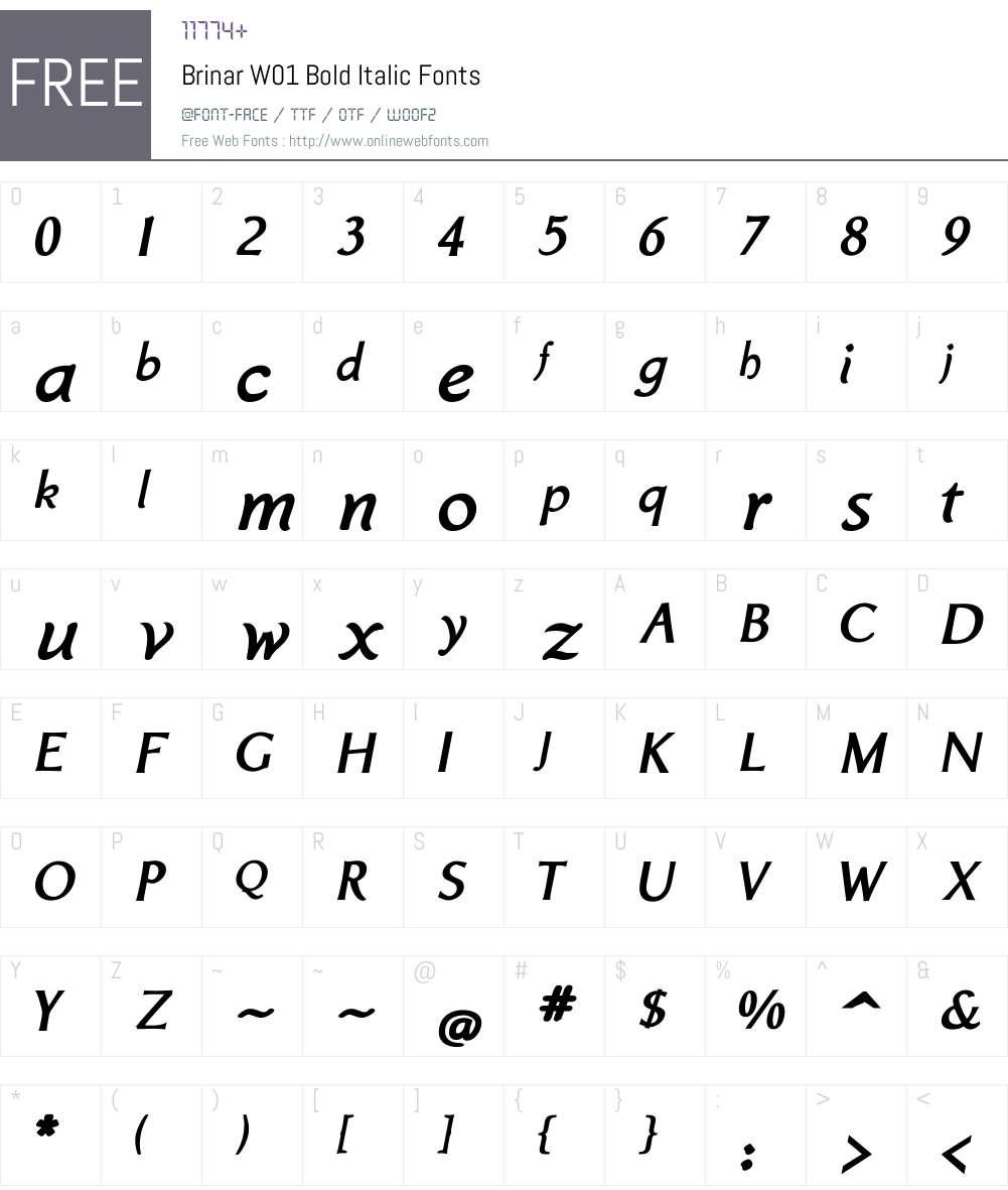BrinarW01-BoldItalic Font Screenshots