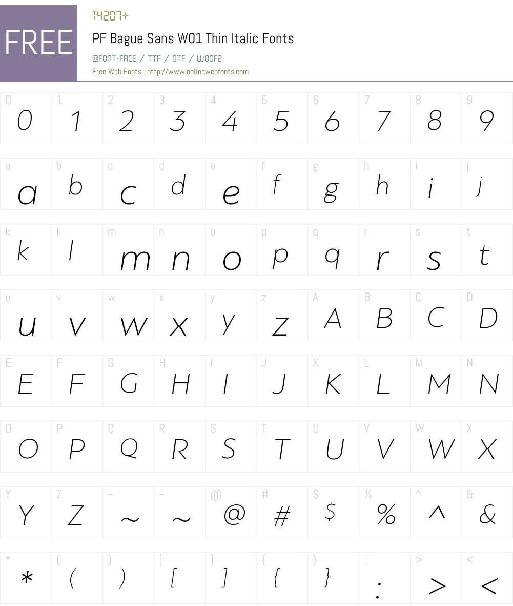 PFBagueSansW01-ThinItalic Font Screenshots