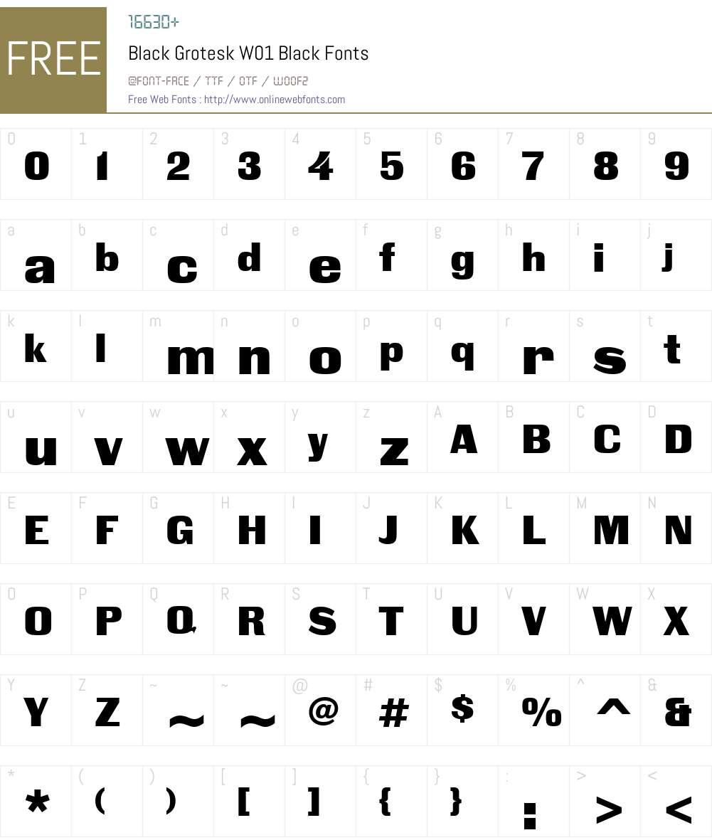 BlackGroteskW01-Black Font Screenshots