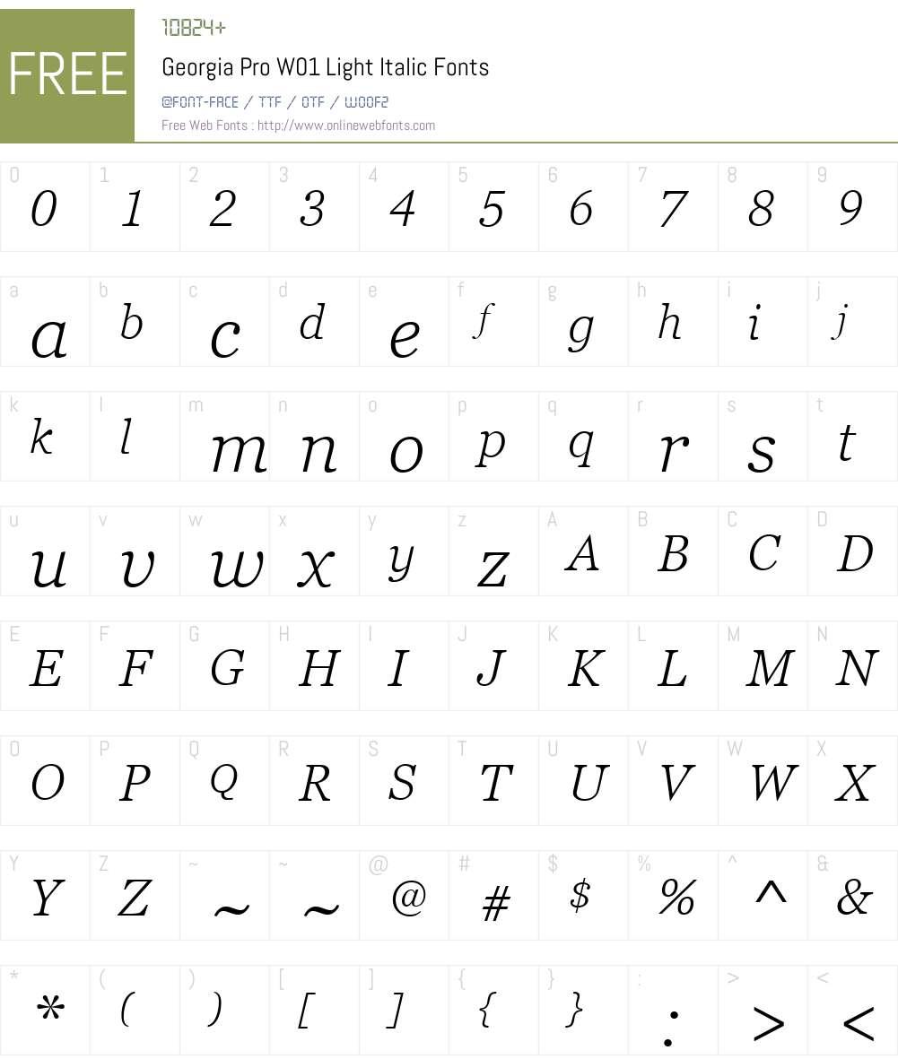 GeorgiaProW01-LightItalic Font Screenshots