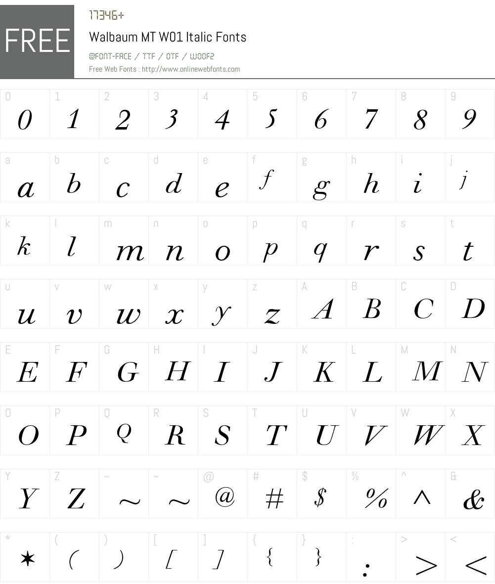 WalbaumMTW01-Italic Font Screenshots