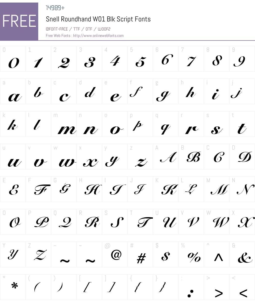 SnellRoundhandW01-BlkScript Font Screenshots