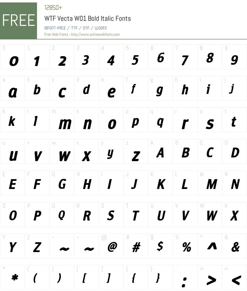 WTFVectaW01-BoldItalic Font Screenshots