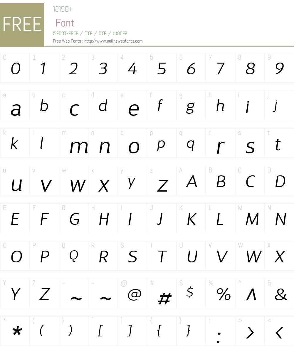 DSariW01-LightItalic Font Screenshots