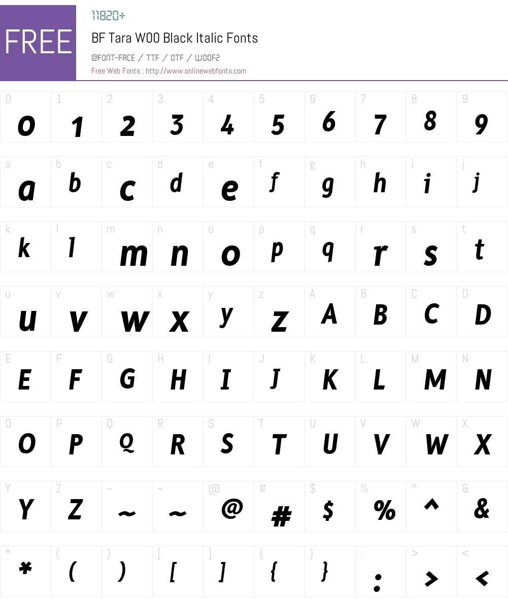 BFTaraW00-BlackItalic Font Screenshots