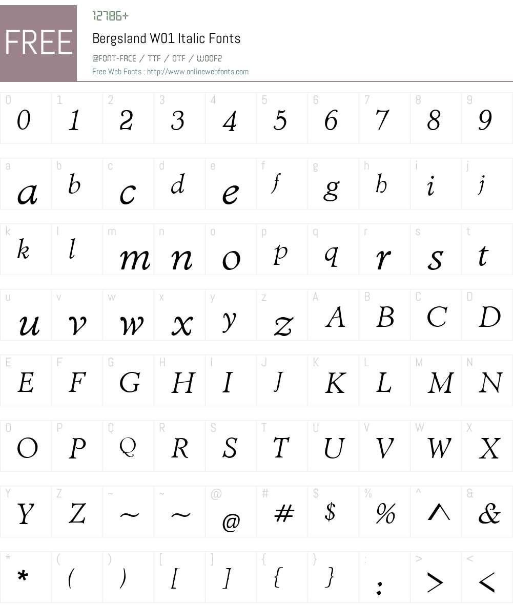 BergslandW01-Italic Font Screenshots