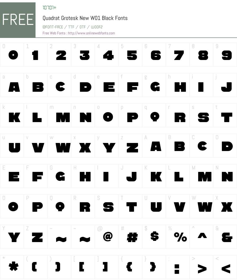 QuadratGroteskNewW01-Black Font Screenshots