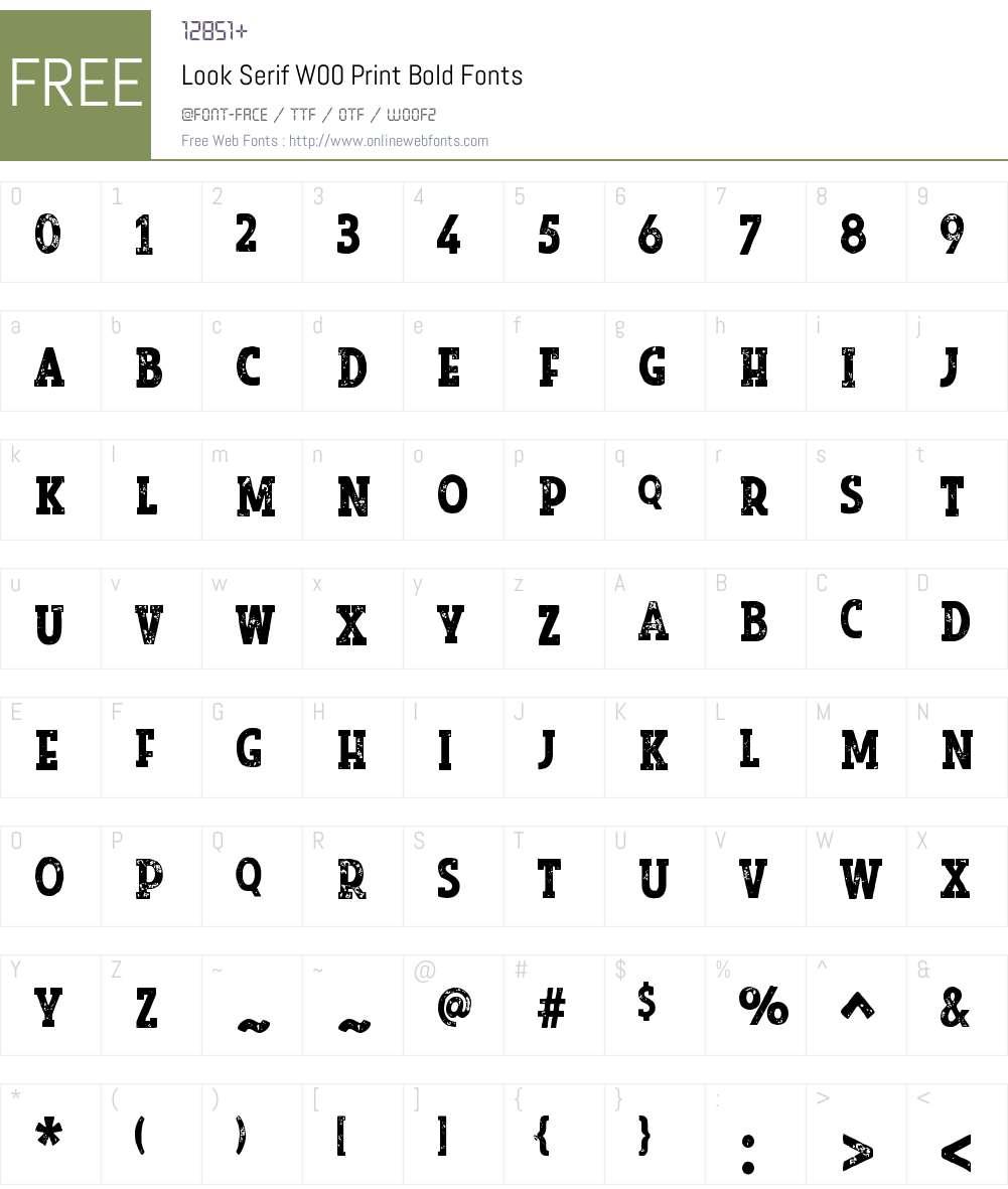 LookSerifW00-PrintBold Font Screenshots