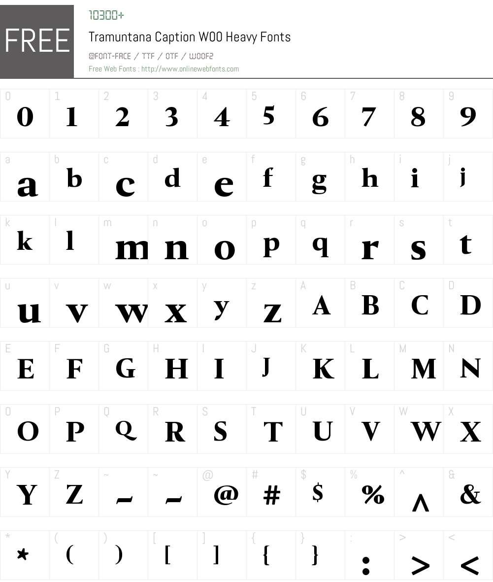 TramuntanaCaptionW00-Heavy Font Screenshots