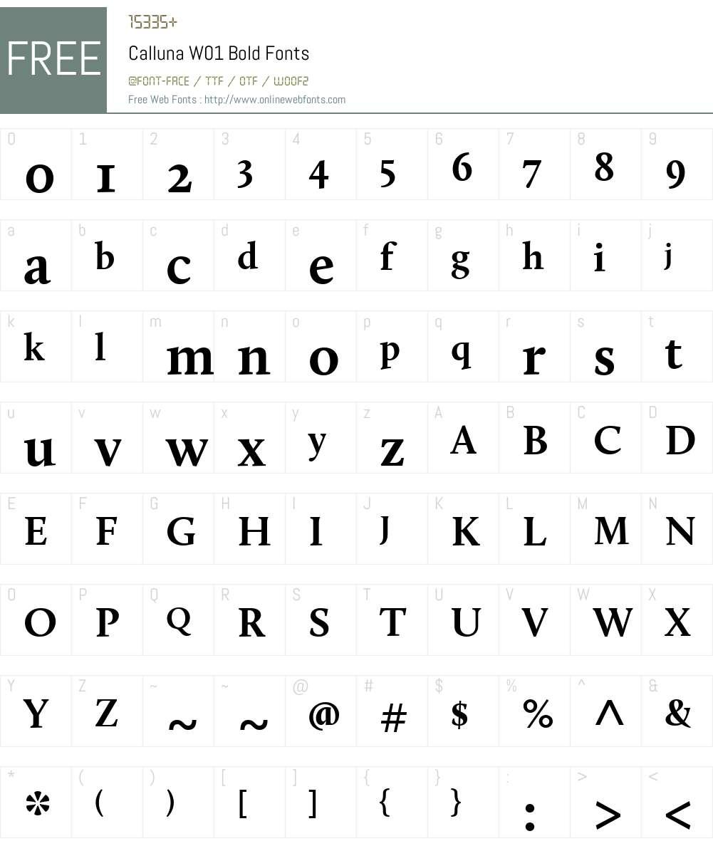 CallunaW01-Bold Font Screenshots