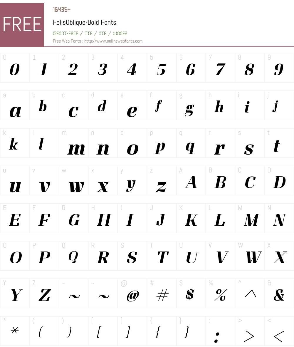 FelisOblique Font Screenshots