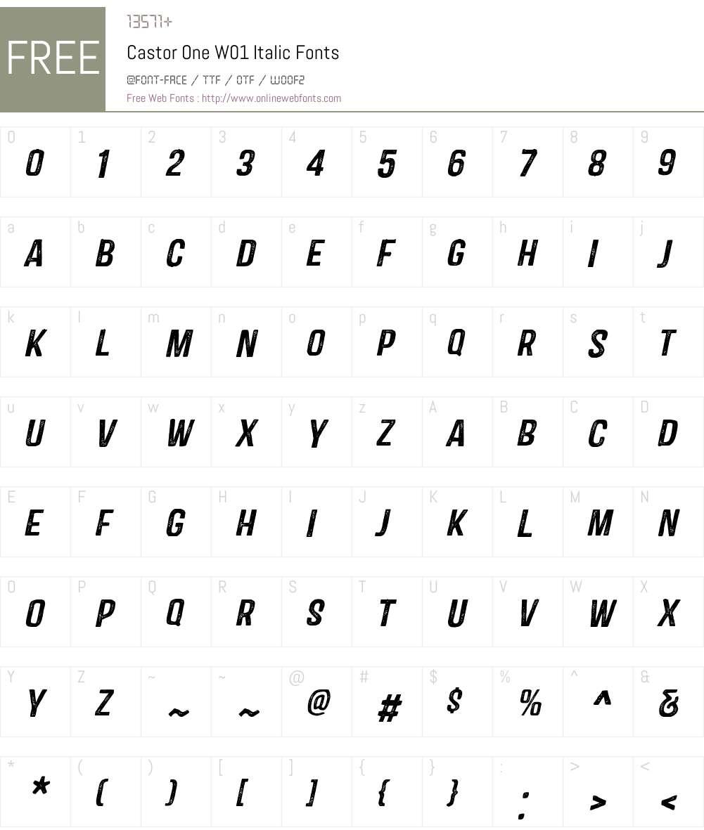 CastorOneW01-Italic Font Screenshots