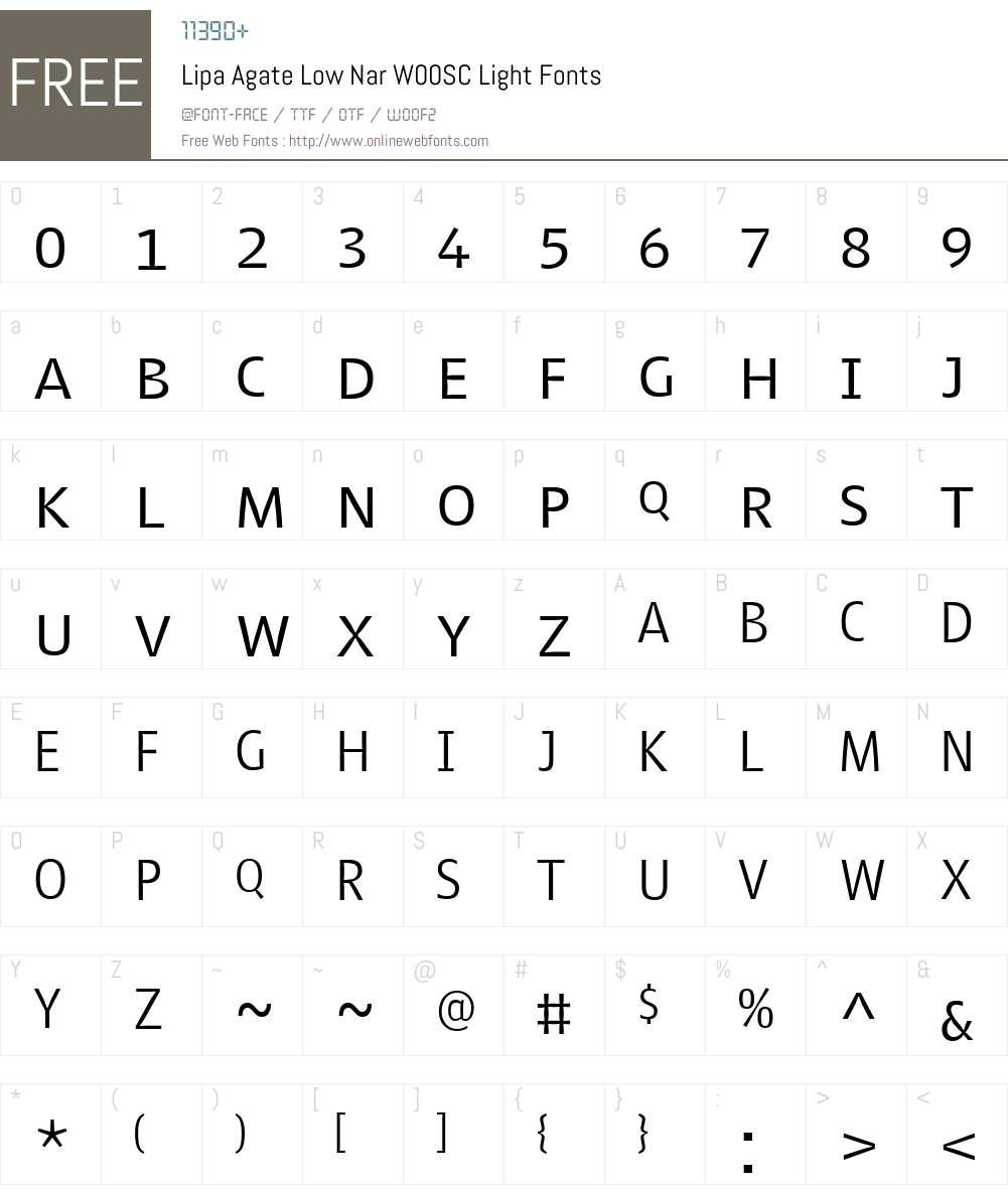 LipaAgateLowNarW00SC-Light Font Screenshots