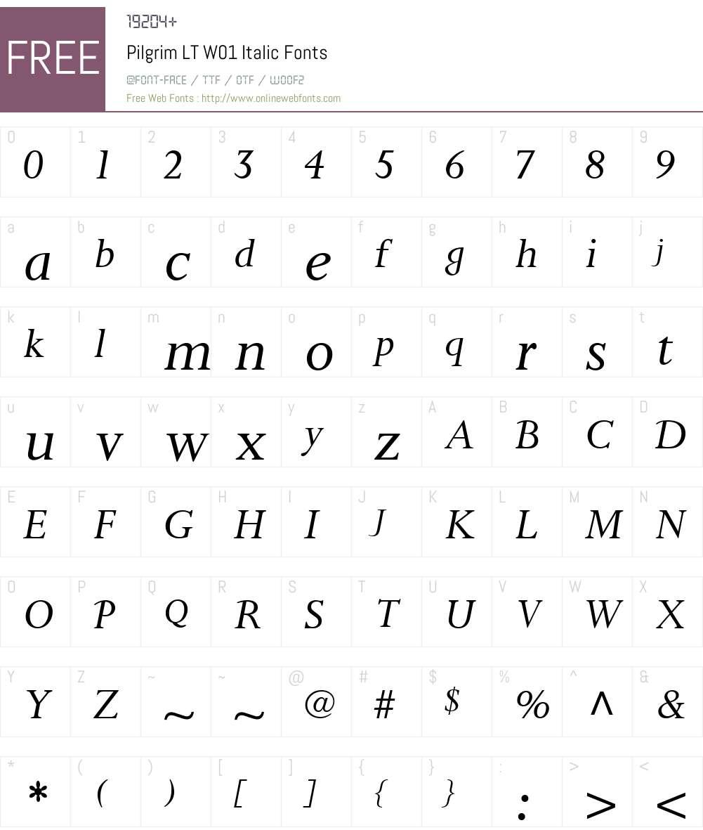 PilgrimLTW01-Italic Font Screenshots