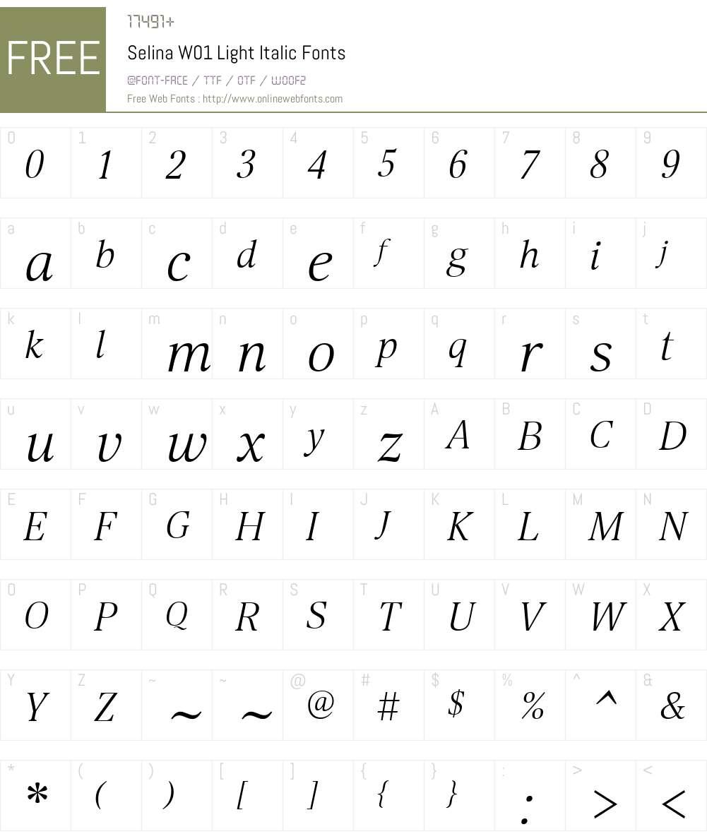 SelinaW01-LightItalic Font Screenshots