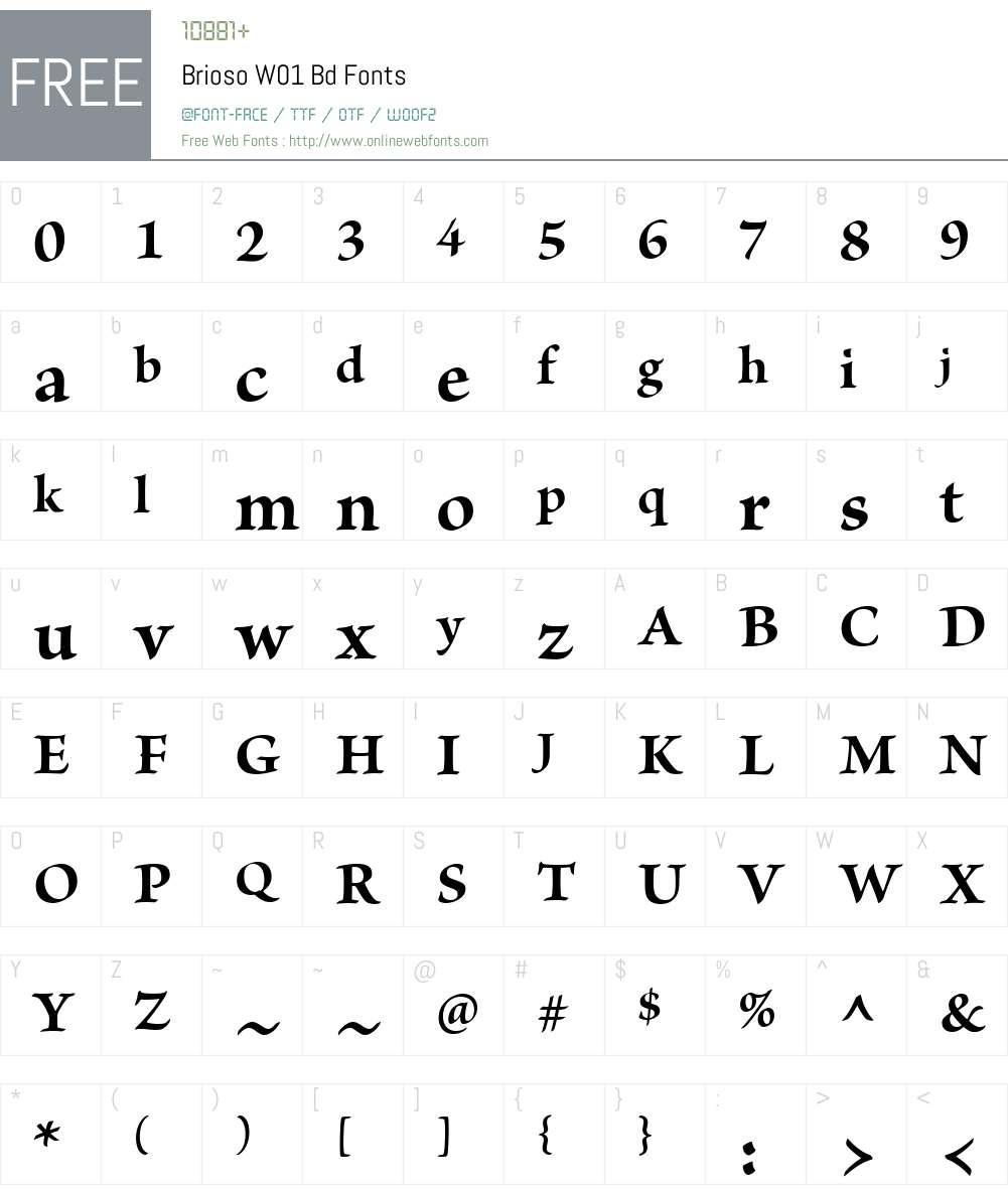 BriosoW01-Bd Font Screenshots